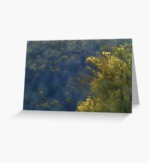 Golden Willow Greeting Card