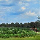 Farm in Ohio by Sheri Nye