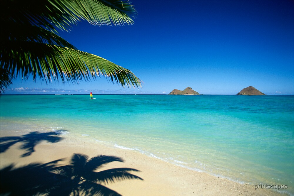 Quot Mokulua Islands At Lanikai Beach Quot By Printscapes Redbubble