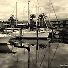 Port Macquarrie Marina by Stan Owen