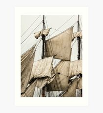 Sails From The Past Art Print