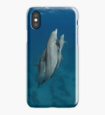 Dolphins in a pod iPhone Case