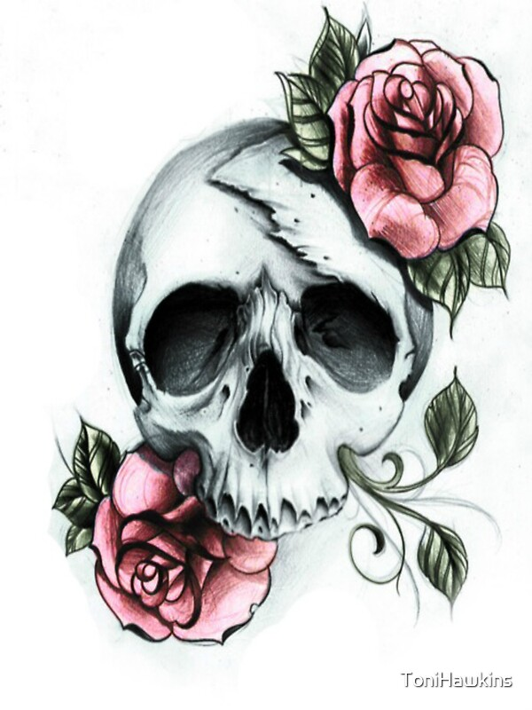 Quot Drawn Skull And Roses Quot By Tonihawkins Redbubble