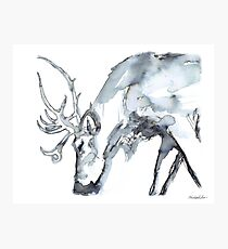 Watercolor Reindeer  Photographic Print
