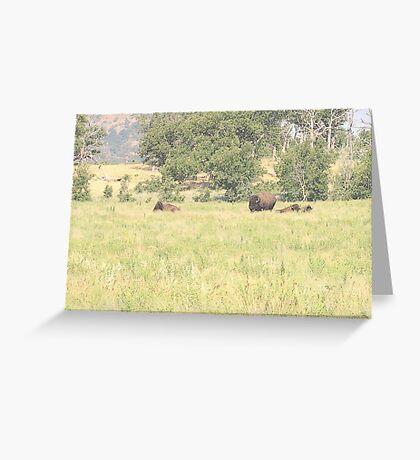 Buffalo Landscape Greeting Card