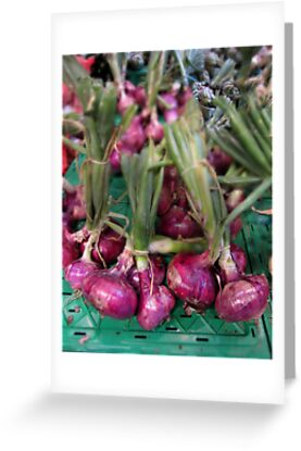 Red onions by Paul Pasco