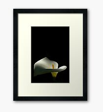 I Want To Be Alone Framed Print