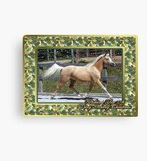 Paso Fino Horse Christmas Card Canvas Print