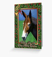 Mule Blank Christmas Card Greeting Card