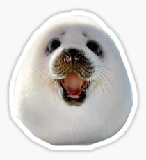 Seal Sticker