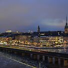 Stockholm from the South by vonb