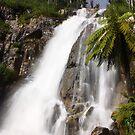 Stevensons Falls by Andrew S