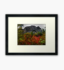 Wolf Rock Fall Colors Framed Print