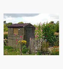 The Garden Shed Photographic Print