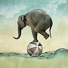 Elephant at Sea by Vin  Zzep
