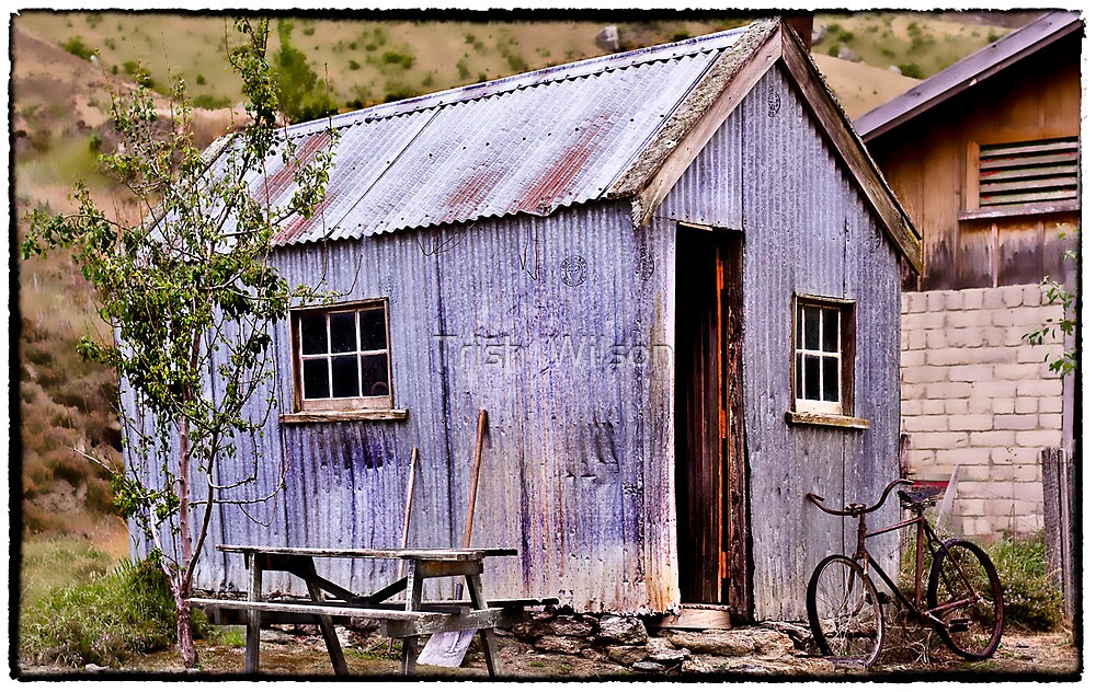 Queenstown  Miners shed by Trish  Wilson