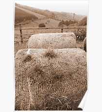 old round bales in Irish countryside Poster