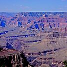 Grand Canyon.....Shadows of time by Nancy Richard