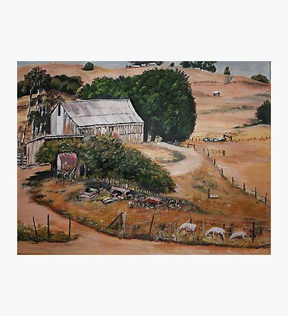 Farmyard view... Photographic Print