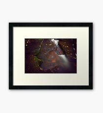 Moss Leaves and Water Framed Print
