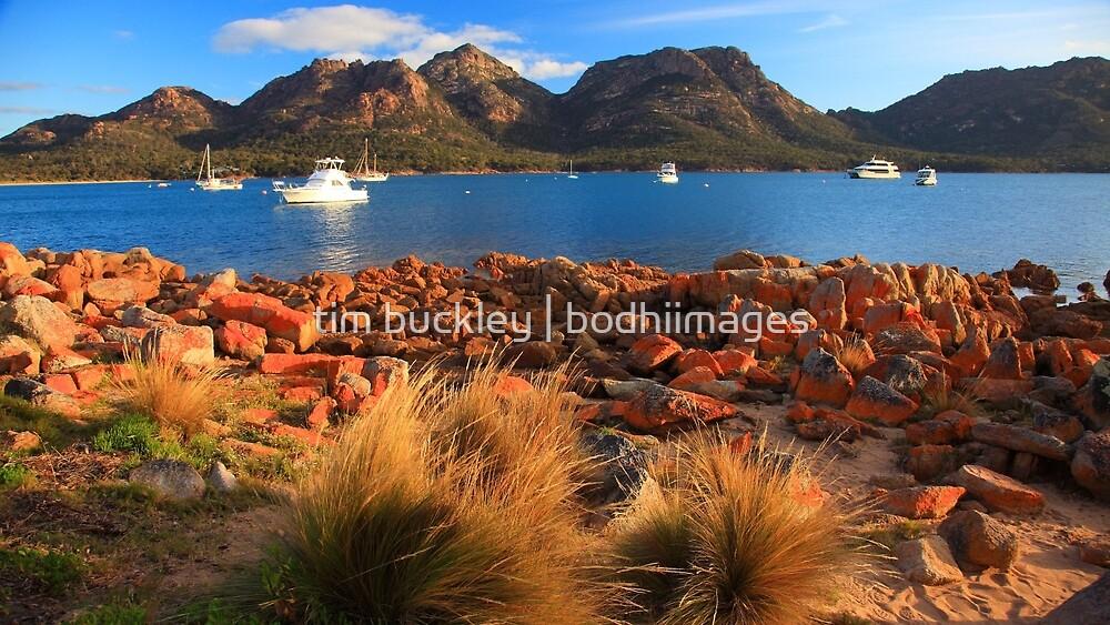 Coles Bay, Freycinet Peninsula, Tasmania by tim buckley | bodhiimages