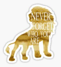 Never forget who you are Sticker