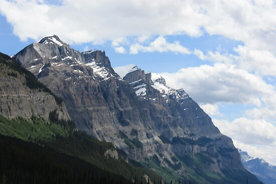 Rocky Mountain View by Leslie van de Ligt