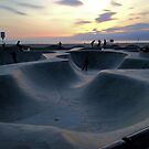 Evening Skate by Robert Phelps