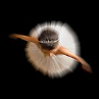 Ballerina by Luca Renoldi