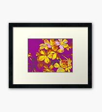 Colours Flowers Framed Print