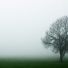 Tree in the Fog by WilMorris