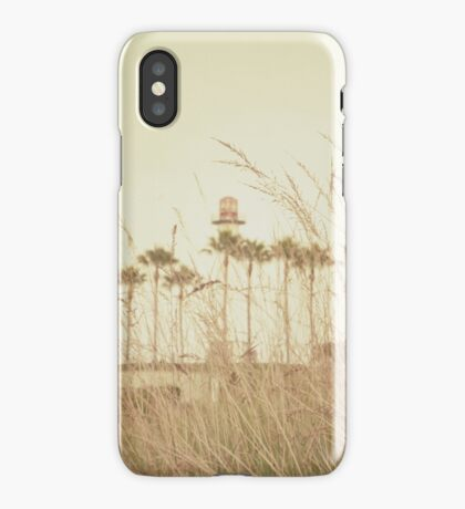Beyond the Brush iPhone Case/Skin