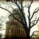 The Garrett Mountain Observation Tower Before Restoration by Jane Neill-Hancock