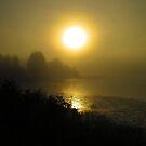 Foggy northern dawn by Alex Call
