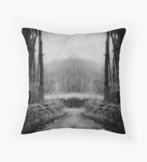 A Path of Right and Wrong Throw Pillow