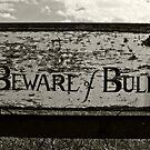 Beware of Bull by Glen Allen