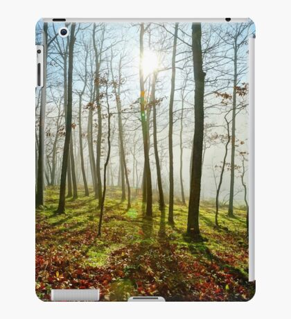 Beauty of winter forest with moss, sunny day, nature concept iPad Case/Skin