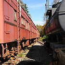 Old Retired Train Wagons  by MaluC