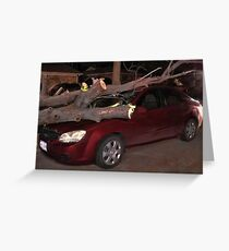 ☝ ☞ AFTER EFFECTS OF STORM DISASTER☝ ☞ Greeting Card