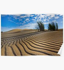 Afternoon Shadows on Sand Poster