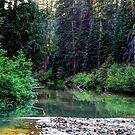 Pleasant Valley by Tori Snow