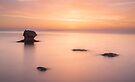 Beach by Cliff Williams