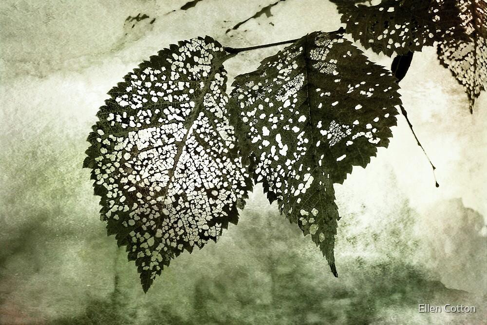 Still Together by Ellen Cotton