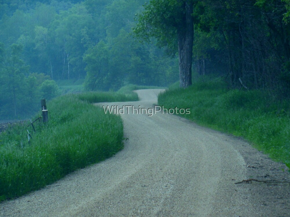Road into the Mist by WildThingPhotos