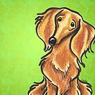 Long Haired Red Dachshund Lime by offleashart