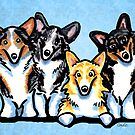 Corgi Four Colors Blue by offleashart