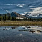Tuolumne Meadows by Cat Connor
