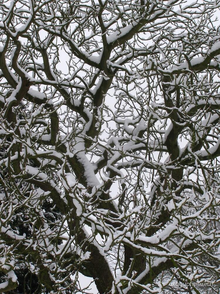 Winter Branches by wiggyofipswich