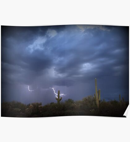 Striking Sonoran Desert Poster