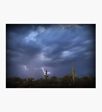Striking Sonoran Desert Photographic Print